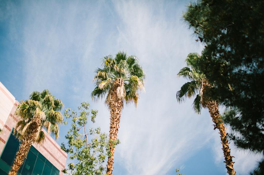 WPPI, Michaela Janetzko, Photographer, California, Wedding