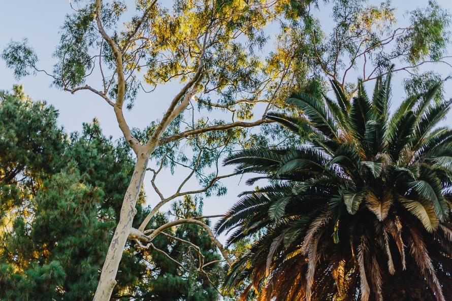 Australia_Michaela Janetzko Photography024